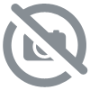 Chinese Coins and Ribbon by Jimmy Fan